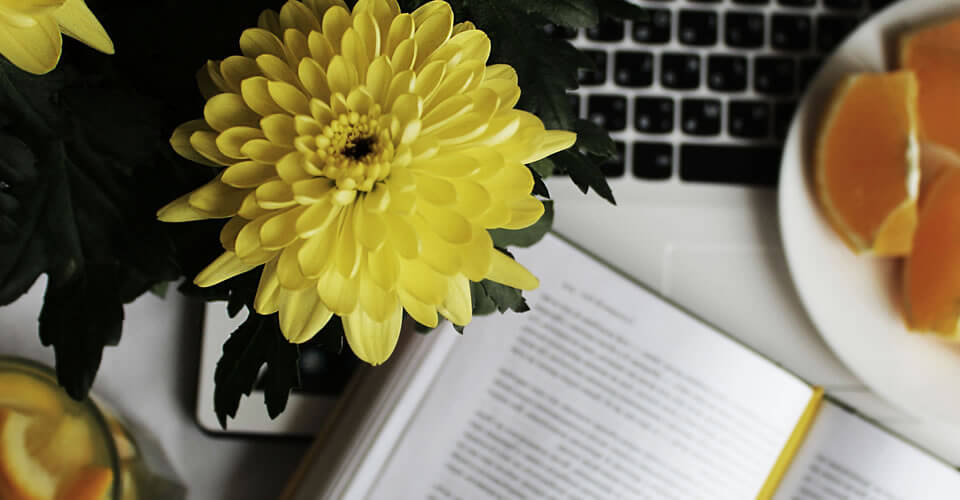 A terapia floral no universo acadêmico
